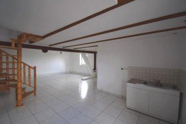Bon' Appart vous propose ce charmant appartement en duplex, situé au 3éme et dernier étage d'une résidence calme à deux pas de la Maison Médicale André Aweng. Le logement se compose de la façon suivante:  -Un grand séjour  -Une cuisine avec cellier -Une salle de de bain  -Une chambre