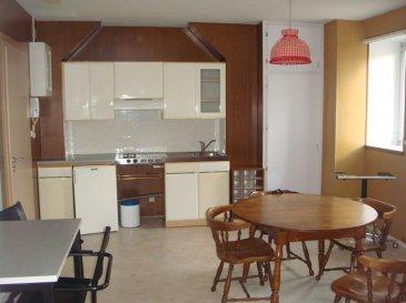 . Sarrebourg : au 2ème et dernier étage : Appartement comprenant : séjour ouvert sur kitchenette équipée, 1 chambre avec bureau - dressing, SDB-WC. Chauffage individuel électrique. Libre rapidement.
