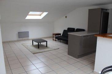 SPECIAL INVESTISSEUR: Bien vendu loué rapport 580 €/mois. Charmant appartement de 46 m2 (loi Carrez) et 77 m2 au sol dans petite copropriété de 3 appartements géré par un syndic bénévole au 1er et dernier étage (sous combles climatisés).  Il se compose d'une entrée/dégagement avec placard, un grand cellier, une cuisine équipée neuve ouverte sur séjour, 2 chambres, une salle de douche, WC séparé. Un cellier supplémentaire sur le pallier.  Frais de copropriété 30 € par mois Syndic bénévole Taxe foncière 300 € Taxe d'habitation 300 €