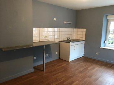 APPARTEMENT DE 55M² AU 1ER ETG COMP: Entrée, cuisine, salon-séjour, une chambre, salle de bain et wc.  Grenier et cave.  prov/ charges: 110.00€ (chauffage compris)