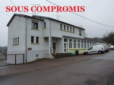 ** SOUS COMPROMIS **  A SAISIR !  Pour particuliers, investisseurs, entreprises, professions libérales ;  Nous vendons à REMERING (57550), un groupe scolaire avec un appartement F4 qu\'il est possible de transformer en F6 à peu de frais, ainsi qu\'un appartement F1 à rafraîchir  L\'ensemble sur un terrain de 19a71ca  L\'ensemble scolaire comprend : deux salles de classe de 56 m2 chacune, un préau de 75 m2, hauteur sous faîte de 5m en partie centrale, des sanitaires (H/F), une pièce de stockage. Ces locaux sont en parfait état sans travaux à prévoir.  Avec aussi au premier étage de l\'immeuble, un appartement de type F4 d\'une surface de 91,45 m2  Il offre une cuisine et pièce à vivre, un salon-séjour – Deux chambres de 15 et 12 m2 Une salle d\'eau avec douche à l\'italienne et WC. Deux autres pièces sur le même palier peuvent y être rattachées.  Cet appartement est libre de tout locataire.  En rez-de-chaussée l\'on trouvera un second appartement de type F1 à rénover. Il pourra être loué séparément.  Sur l\'avant du bâtiment un parking pour une dizaine de véhicules. Sur l\'arrière une cour entièrement goudronnée de 1700 m2 environ. Accessible par un grand portail latéral, elle peut servir de parking.   L\'ensemble est clos.  *** Double vitrage PVC OB récent pour le groupe scolaire *** Double vitrage sur châssis bois pour les appartements. *** Chauffage central au fuel (2 chaudières séparées). *** Toiture en parfait état.  NB : L\'appartement à rénover et l\'école n\'étant actuellement pas chauffés comme des lieux habités au quotidien, leur Diagnostic de Performance Energétique (DPE) n\'a pu être valablement établi. Il est classé « VIERGE » pour ces deux lots.  DISPONIBILITE IMMEDIATE.  CONTACT : Gérard STOULIG – Agent commercial au : 06 03 40 33 55 WIR SPRECHEN DEUTSCH.   Les frais d\'agence sont inclus dans le prix annoncé.