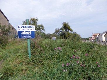 NOUS VENDONS à LACROIX 57320 (Commune SAINT FRANCOIS LACROIX Moselle) Situé au calme à l'entrée du village et à proximité des frontières du LUXEMBOURG et de L' ALLEMAGNE.  Un terrain à bâtir d'une contenance de 10a52 viabilisé. Avec une largeur de façade de 51 m sur rue, il peut offrir la possibilité d'y construire une maison en partie plain-pied avec des garages en demi-niveau inférieur.  Ce terrain est libre de construction, il est situé dans une rue en impasse.  CONTACT : Le conseiller Commercial : Jean-Luc MEYER au 07 60 13 78 96 Ou directement  ABEL IMMOBILIER au 03 87 36 12 24 Les frais d'agence sont inclus dans le prix annoncé.