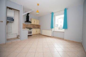 Spacieux F5 au 1er étage petite copropriété centre ville.. Au 1er étage d\'une petite copropriété de 3 logements, bel appartement spacieux composé d\'un salon d\'un séjour de  33 M2, 3 grandes chambres de 16,17, et 15 M2  une salle de bains, un wc, une cuisine équipée avec cellier,une cave.  Libre de suite.