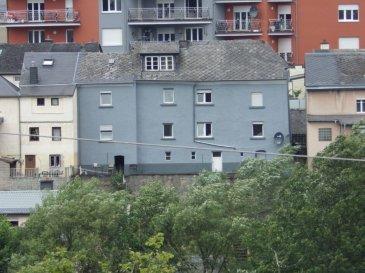 Maison bien entretenue en vente. Nouvelle salle de bain. Grande terrasse. orrienté plein sud. A vendre avec locataire