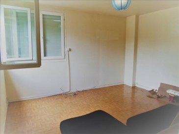 F2 de 46m² hab au 1er étage d\'une petite copropriété de 16 appartements (lot 24 et les 50/1000° des parties communes générales).   Il offre une belle entrée avec placard, wc séparé, salle d\'eau, une chambre avec placard, un salon et une cuisine.  DV PVC avec volet électrique, chauffage électrique.  Une cave (lot 4 et 1/1000° des PCG) et un grenier (lot 34 et 5/1000° des PCG) complètent ce bien.  A l\'orée des bois .. il vous séduira par son cadre.  Charges annuelles environ 430€. Syndic professionnel.  Honoraires inclus 10% TTC .. EXCLUSIVITE AGORA BRIEY 03.82.20.25.26