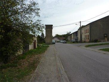 Nous vendons à REMELFANG (Moselle) A 30 kms de METZ et de THIONVILLE À proximité immédiate de l\'agglomération de BOUZONVILLE, de ses commerces et services ;  un terrain à construire d\'une superficie de 18 ares, situé dans la rue principale du village.  Sa largeur sur rue est de 23 mètres.  Ce terrain est libre de construction. Viabilisation aisée.  DISPONIBLE DE SUITE  CONTACT :  Gérard STOULIG – Agent commercial au : 06 03 40 33 55 ou l\'agence au : 03 87 36 12 24.  Les frais d\'agence sont à la charge du vendeur.