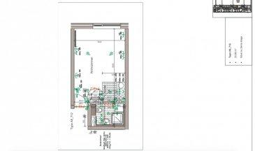 Studio au Plaza II  Studio avec salle de douche wc, cuisine open space et cave  Nous vous invitons à nous rendre visite ou contacter l'un de nos commerciaux pour plus d'informations.  Jemp et Marc 621216646 ou 621210333   Les surfaces et superficies sont indicatives  Rejoignez-nous sur Facebook : Newjomar Immobelvai