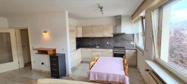 Bel duplex avec cuisine ouverte sur le salon avec garage fermé et parking devant le garage