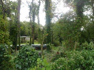 Réf: 5368  beau terrain ENTREE DE MERLIMONT   à la   SORTIE DE RANG DU FLIERS dont 1 petite partie est boisée 980m2 entourée de belles villas récentes. REF 5368