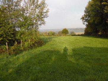 Terrain à Rocquigny