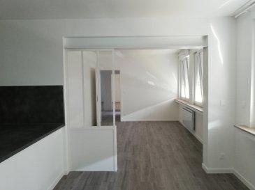 Appartement F4 situé au 1er et dernier étage d\'un petit immeuble calme de 3 lots (2 logements et 1 bureau).  Ce logement lumineux et récemment rénové comprend: une entrée, un dressing/bureau, une cuisine ouverte semi équipée (lave-vaisselle encastré, four, plaque de cuisson induction et hotte), un salon, deux chambres et une salle d\'eau avec wc (douche à l\'italienne, deux vasques et emplacement pour le lave-linge).  En annexes: un cellier privatif et un emplacement de stationnement   Chauffage individuel électrique.  Situé à moins de 10min en voiture du LINKLING, de l\'autoroute et de la gare SNCF.