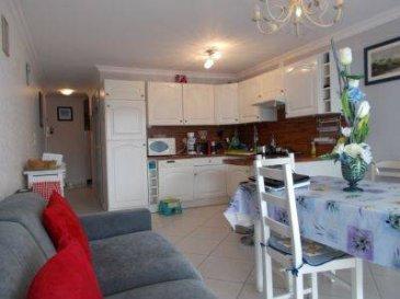 REF 5851  Résidence CAP SOLEIL appartement en rez-de-chaussée, vendu meublé, très soigné et lumineux de 46m², exposé plein sud, avec volets électriques:  Entrée avec rangements, salle d\'eau, wc, chambre spacieuse, un coin cabine, séjour avec balcon terrasse et cuisine équipée.   cave , garage   Classé E et C