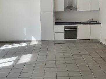 Bel Appartement rénové de 60 m2 en plein cœur  du Centre-Ville Nouvelle Cuisine équipée ,grand living, 1 chambre à coucher, salle de douche-buanderie et cabinet de toilette séparé.