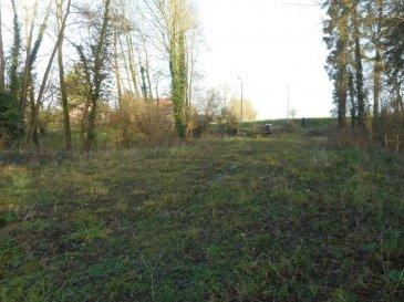 Terrain constructible à Bavay