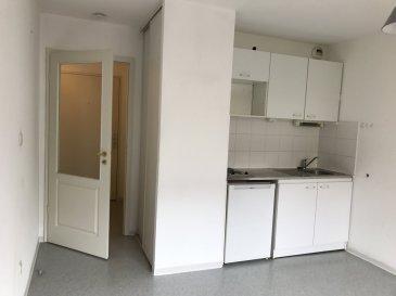 STUDIO - 20 M2 - STRASBOURG KRUTENAU.  Idéalement situé dans le quartier Krutenau à Strasbourg, dans une copropriété récente et sécurisée, à proximité des commerces et transports, nous proposons à la location un studio d\'une surface 20m2 au 1er étage sans ascenseur. Il comprend: une entrée avec placard, une pièce principale avec kitchenette équipée (plaques et réfrigérateur), bureau encastré et une salle de douche avec WC. Chauffage et eau chaude individuels électriques. Disponible au 01/07/2020. Loyer: 419EUR par mois charges comprises (dont 38EUR de provisions pour charges avec régularisation annuelle). Dépôt de garantie: 381EUR. Honoraires à la charge du locataire: 244.92EUR TTC (dont 61.23EUR inclus pour l\'état des lieux). Hebding Immobilier 03.88.23.80.80