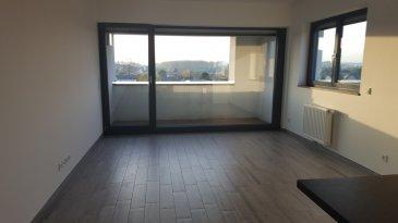 Studio à louer a Schifflange, cité Op Hudelen avec balcon, emplacement intérieur, cave, dernière étage, à partir du 01 novembre 2021  Paul 621 674 905 simon@sohoimmo.lu