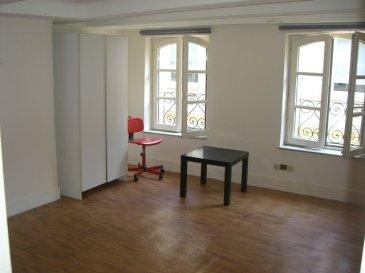 Studio équipé et meublé, en plein centre ville. Celui ci fait une surface de 20m², il est composé d'une pièce principale, d'un coin cuisine équipé, et d'une salle de douche. Chauffage électrique. Disponible à compter du 1er juin.