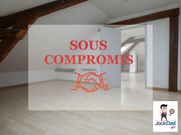 JACKCED : Appartement Florange 3 pièce(s) 46.50 m2. IDÉAL INVESTISSEURS !<br/><br/>Jackced présente au coeur de la commune de Florange, un appartement F3 de 46,50m² carrez faisant plus de 100m² au sol au 2ème et dernier étage.<br/><br/>Il est composé d\'un sas d\'entrée, d\'une pièce de vie ouverte sur la cuisine , de 2 chambres et d\'une salle d\'eau avec cabine de douche et  wc.<br/>Une place de parking privative ainsi que 2 caves complètent le tout.<br/><br/>Prix location estimé = 500€ + Charges<br/><br/>Copropriété sécurisée avec portail électrique.<br/>Chauffage Individuel électrique<br/>Electricité aux normes<br/><br/>Copropriété de 19 lots dont 5 d\'habitations.<br/>730€/ an de charges de copropriété soit 61€/mois<br/>Pas de procédures en cours<br/><br/>Pour plus de renseignements contactez moi :<br/>Marie PETITFRERE : 06 95 67 68 76<br/><br/>Copropriété de 19 lots (Pas de procédure en cours).<br/>Charges annuelles : 730.00 euros.