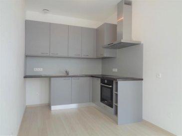 Entrée indépendante pour cet appartement de type F3 de 72.29m² habitables situé en rez de chaussée, entièrement refait à neuf. Composé d\'une entrée desservant une pièce de vie de 23m² avec cuisine équipée (four, plaque cuisson, hotte), 2 belles chambres (17m² chacune), salle d\'eau, toilettes séparés. Accès direct de l\'appartement à un vaste sous-sol privatif de 40m². L\'appartement est loué avec une place de parking privative (borne télécommandée).