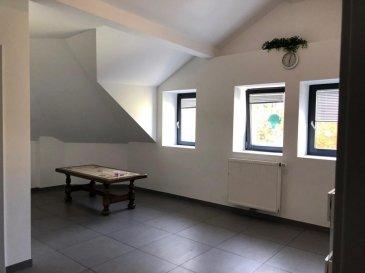 Martin, RE/MAX Partners, spécialiste de l\'immobilier à Dudelange, vous propose en LOCATION cet appartement. <br><br>Idéalement situé, au calme avec un parking gratuit en face, proche du centre de Dudelange, il vous offre une superficie au sol de 40m² , et se compose d\'une grande pièce de vie avec une cuisine équipée ouverte. S\'y ajoutent une chambre, une salle d\'eau avec douche combinée et un WC. <br><br>Convient parfaitement à une personne seule ou un couple. <br><br>À visiter sans attendre! Libre de suite.<br><br>N\'hésitez pas à me contacter au +352 661 160 061 - martin.ellis@remax.lu<br><br />Ref agence :5096004