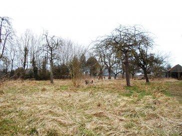 Terrain constructible à Landouzy la ville
