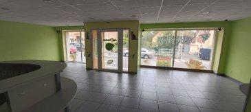 Local Commercial. Sur l\'axe passant de Diemeringen, un local à usage commercial ou professionnel  comprenant une grande pièce centrale avec grandes vitrines et comptoir d\'accueil, une pièce arrière avec point d\'eau, wc, sur une surface globale de 111m². Le tout en bon état.<br/><br/>Libre de suite<br/><br/>Visite virtuelle:<br/>https://app.immoviewer.com/portal/tour/2118163?accessKey=5f57<br/><br/>Contact Nord Sud immobilier à Rohrbach Les bitche - Bitche ou Sarreguemines au 03  72  64 01 02