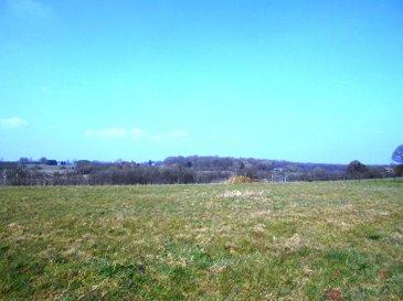 Terrain à La neuville-aux-joûtes