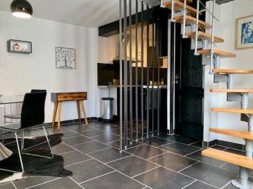 Dans une toute petite copropriété sécurisée et entièrement rénovée, découvrez cet appartement en duplex décoré avec goût.<br />Il comprend :<br />- au 1er niveau : une cuisine ouverte sur un spacieux séjour, un salon, une salle d\'eau avec meuble double vasque et douche, un WC suspendu séparé ;<br />- au 2ème niveau : combles parfaitement exploités composés de deux pièces ainsi que d\'un petit espace bureau ;<br />- à l\'extérieur un garage et une place de parking privée.<br />Beaucoup de charme, aucun travaux à prévoir!