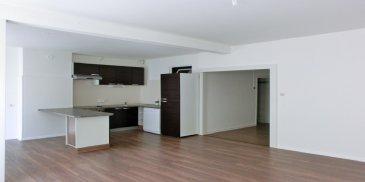 Au premier étage. Duplex de 85 m², beau et lumineux séjour donnant sur une cuisine ouverte meublée et équipée , une salle de bains avec wc .  A l'étage deux chambres, un bureau, un wc et un grenier. Chauffage collectif.