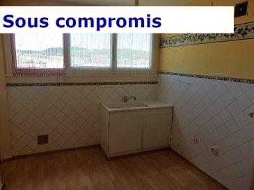 NOUS VENDONS : Pour particulier ou investisseur ;  Proche du centre-ville de KNUTANGE, au 8 rue des Peupliers ;  A proximité immédiate de l'entrée et de la sortie de l'autoroute A 30. A 3 minutes de Hayange, de ses commerces et services.  Un appartement F2 situé au 3ième étage.  Il comprend sur une surface habitable de 49,04 m2 : Une entrée, une cuisine, un séjour, une chambre, SDB, WC séparé et une cave.  ***Chauffage individuel au gaz. ***Fenêtres double vitrage. ***Places de parking devant l'immeuble.  DISPONIBLE DE SUITE  CONTACT : Jean-Luc MEYER, Agent commercial au : 07 60 13 78 96 Ou l'agence au : 03 87 36 12 24.  Les frais d'agence sont inclus dans le prix annoncé.