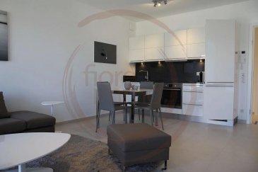 Nous avons le plaisir de vous proposer à la location un bel appartement tout compris (internet, télévision, femme de ménage, draps de bain et de lits...) dans le quartier de Kirchberg.  Le plus grand atout de ce logement de haut standing est qu'il est entièrement meublé et équipé.   Il se compose comme suit: - Cuisine équipée ouverte sur living et salle à manger; - 1 chambre; - Salle de bain; - Balcon d'environ 7m2;  - Buanderie équipée (lave linge/sèche linge); - Garage et cave en option.  Prix locations: 1 mois: 2.600EUR 2/6 mois: 2.500EUR > 7 mois: 2.400EUR Parking: 150EUR  Frais d'agence à la charge du locataire: 1 mois de loyer + 17% TVA.   Pour plus de renseignements veuillez contacter l'agence.<br />Wir haben das Vergnügen, Ihnen eine schöne Wohnung zu vermieten, mit einer Fläche von ca. 43m2, möbliert und komplett ausgestattet, es besteht wie folgt:  - Offene Küche mit Wohnzimmer und Esszimmer; - 1 Zimmer; - Badezimmer; - Balkon von ca. 7m2;  - Ausgestatteter Waschraum (Waschmaschine/Wäschetrockner) - Garage und Keller.  Einschließlich Nebenkosten (Reinigungsservice, Strom, WLAN, Fernseher usw.)  Agenturkosten zu Lasten des Mieterteils: 1 Monat Miete + 17% MwSt.   Für weitere Informationen wenden Sie sich bitte an die Agentur.<br />We are pleased to offer you for rent a beautiful all-inclusive apartment (internet, television, maid, shower towels, bed sheets), in the Kirchberg district.  The major asset of this high standing flat is that it is entirely furnished and equipped.   It consists of: - Equipped kitchen open to living and dining room; - 1 bedroom; - Bathroom; - Balcony of about 7m2;  - Equipped laundry (washing machine/dryer); - Garage and cellar optional.  Rental prices: 1 month: 2.600EUR 2/6 months: 2.500EUR > 7 months: 2.400EUR Parking: 150EUR  Agency fees at the expense of the tenant: 1 month rent + 17% VAT.   For more information please contact the agency.