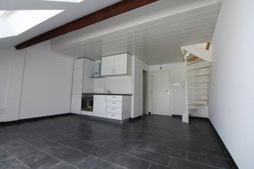 Immomod S.A. vous propose un appartement duplex en location à Septfontaines (Simmerfarm)  Il se compose d'une pièce de vie donc studio + une petite mezzanine pour dormir.  Disponibilité : 1.11.2020  Loyer : 850 € Charges : 125 € Caution : 1700 € Frais de l'agence : 994,50 €  Avant la visite, veuillez nous envoyer vos documents par e-mail sur stas.immomod@gmail.com :  1) Contrat de travail (CDI obligatoire) 2) Les 3 derniers fiche de salaire 3) Une copie de votre carte d'identité   On fait tous les visites après l'acceptation de votre dossier par le propriétaire.