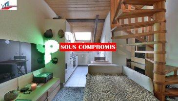 VIP Promotions s.a. vous propose en exclusivité cet appartement-duplex rénové, d'une surface utile de 41,08m², situé en plein cœur de la commune de Habscht, plus précisément à Simmerfarm.  Découvrez notre offre en visite virtuelle:  https://360.immopro.lu/uploads/5e454fcbd9a056.18132668/  Le bien se compose comme suit;  Premier étage:  - Living / pièce à vivre - Salle de douche - Cuisine ouverte et équipée (pas de lave-vaisselle)  Deuxième étage:  - Chambre à coucher  Divers:  Appartement muni d'une cave privative et d'une buanderie commune au rez-de-chaussée.  Idéal pour investisseurs, offre à saisir rapidement.  Pour plus de renseignements ou pour une prise de rendez-vous, veuillez nous contacter au +352 691 901 219 ou bien par e-mail sur info@vippromotions.lu  Suivez-nous sur notre page Facebook pour recevoir nos informations en continu.