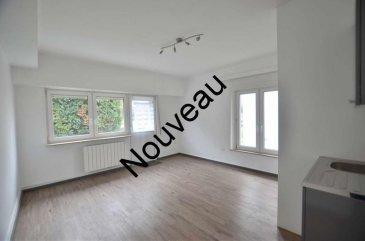 Isma BAUER RE/MAX Luxembourg, spécialiste de l'immobilier à Dudelange, vous propose cet appartement dans une petite copropriété de 6 appartements.  Ce bien est divisé en deux parties différentes. Vous trouverez pour une partie: - une cuisine  séparée - un espace ouvert de +/- 20m². - une salle de douche avec WC.  Pour la deuxième partie, un bureau, vous trouverez : - une cuisine ouverte. - un espace ouvert de 17m². - un WC.  L'appartement est vendu avec une cave.   L'appartement se situe dans un quartier calme de Dudelange, proche des commodités. cette copropriété  comporte un sous-sol avec  caves et autre locaux techniques , un rez-de-chaussée surélevé avec 2 appartements.   Idéal pour une 1ére  acquisition ou investisseur (rentabilité +/- 5%) N'hésitez pas a nous contacter pour plus d'informations. Contact: +352 621 813 784 isma.bauer@remax.lu Ref agence :5096106