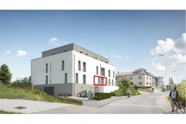 Nouveau studio à louer à Binsfeld RE/MAX spécialiste de l'immobilier au Luxembourg vous propose à la location en exclusivité ce nouveau studio de 2021 à Binsfeld.  Ce nouveau studio de 31 m2, vous propose les prestations suivantes:  Un hall d'entée donnant accès à :  Une pièce de séjour avec cuisine équipée pouvant servir de living avec accès terrasse. Vous y trouverez une chambre ainsi qu'une salle de douche.  Une cave, une buanderie commune et un emplacement intérieur viennent compléter ce bien.  Disponible à partir du 1er mai 2021. Visite du bien à partir du 1er avril 2021.  Contrat de travail CDI exigé  Loyer : 650 euros Garantie : 1300 euros Frais Agence   TVA payable par le locataire