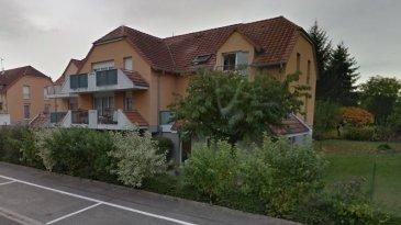 F2 - 45m2 - ROUNTZENHEIM.  Idéalement situé Rue de Leutenheim à Rountzenheim, nous proposons à la location un F2 d'une surface de 45m2 situé au 2ème et dernier étage de l'iemmuble, sans ascenseur. Il se compose d'une entrée avec placard, d'une cuisine équipée ouverte sur le séjour, d'une chambre, d'une salle de bain et d'un WC. L'appartement dispose également d'une terrasse, d'une cave et d'un garage. Chauffage et eau chaude collective.   Libre au 19/09/19   Surface habitable: 45m2   Loyer : 503EUR par mois dont 80EUR de provisions pour charges avec régularisation annuelle   Dépot de garantie: 423EUR   Honoraires à la charge du locataire : 495EUR TTC dont 135EUR TTC inclus pour l'état des lieux