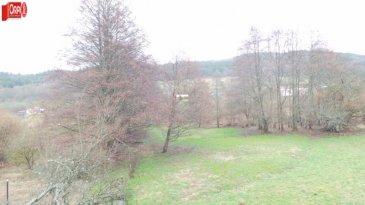 Maison Ban-sur-Meurthe-Clefcy