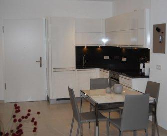 Nous avons le plaisir de vous proposer à la location un bel appartement tout compris (internet, télévision, femme de ménage, draps de bain et de lits...) dans le quartier de Kirchberg.<br><br>Le plus grand atout de ce logement de haut standing est qu\'il est entièrement meublé et équipé. <br><br>Il se compose comme suit:<br>- Cuisine équipée ouverte sur living et salle à manger;<br>- 1 chambre;<br>- Salle de bain;<br>- Balcon d\'environ 7m2; <br>- Buanderie équipée (lave linge/sèche linge);<br>- Garage et cave en option.<br><br>Prix locations :<br>1 mois: 2.500EUR<br>2/6 mois: 2.400EUR<br>> 7 mois: 2.300EUR<br>Parking: 150EUR<br><br>Frais d\'agence à la charge du locataire: 1 mois de loyer + 17% TVA. <br><br>Pour plus de renseignements veuillez contacter l\'agence.<br /><br />Wir haben das Vergnügen, Ihnen eine schöne Wohnung zu vermieten, mit einer Fläche von ca. 43m2, möbliert und komplett ausgestattet, es besteht wie folgt:<br><br>- Offene Küche mit Wohnzimmer und Esszimmer;<br>- 1 Zimmer;<br>- Badezimmer;<br>- Balkon von ca. 7m2; <br>- Ausgestatteter Waschraum (Waschmaschine/Wäschetrockner)<br>- Garage und Keller.<br><br>Einschließlich Nebenkosten (Reinigungsservice, Strom, WLAN, Fernseher usw.)<br><br>Agenturkosten zu Lasten des Mieterteils: 1 Monat Miete + 17% MwSt. <br><br>Für weitere Informationen wenden Sie sich bitte an die Agentur.<br /><br />We are pleased to offer you for rent a beautiful all-inclusive apartment (internet, television, maid, shower towels, bed sheets), in the Kirchberg district.<br><br>The major asset of this high standing flat is that it is entirely furnished and equipped. <br><br>It consists as follows:<br>- Equipped kitchen open to living and dining room;<br>- 1 bedroom;<br>- Bathroom;<br>- Balcony of about 7m2; <br>- Equipped laundry (washing machine/dryer);<br>- Garage and cellar optional.<br><br>Rental prices:<br>1 month: 2.500EUR<br>2/6 months: 2.400EUR<br>> 7 months: 2.300EUR<br>Parking: 150EUR<br><br>Agency fees at the expense o