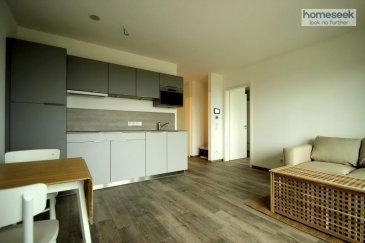 Infos et visites au 621.37.08.96. Au c½ur de Gasperich dans une nouvelle construction, appartement meublé de 50m² avec vue sur le futur parc de Gasperich.<br>Il est composé comme suit :<br>- Hall d\'entrée<br>- Salle de douche avec WC<br>- Grande chambre avec accès balcon et coin dressing<br>- Salon/cuisine avec accès balcon<br>Au -1, une grande cave privative et au -2 un emplacement de parking intérieur. A noter également : prestations de qualité, domotique (contrôle chauffage/volets électriques, lampes sur tablette), triple-vitrage, ventilation.<br>Proximité directe Deloitte, Lycée français et PWC. Tous commerces à proximité.<br>Libre immédiatement.<br>