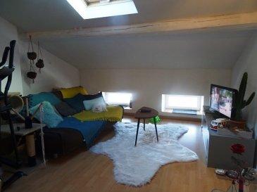 SIERCK LES BAINS, proximité toutes commodités:   Coquet F2 situé au 3 éme étage d'une petite copro, comprenant:  Un séjour ouvert sur cuisine équipée, 1 chambre, sdb douche avec toilette. Libre fin Mars. A voir.