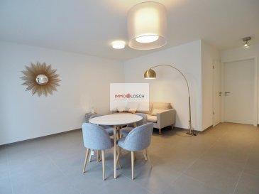 Bel appartement à louer qui se situe en plein centre d\'Esch-sur-Alzette de +/- 50 m2  Description:  - Hall d\'entrée  - cuisine équipée ouverte  - salon  - 2x balcons  - salle de douche  - chambre à coucher  - buanderie commune  - meublé   Possibilité de louer un emplacement intérieur pour 150€  Disponible le 01.03.2020   Loyer: 1100€ Charges : 190€ Caution : 2200 € Frais d\'agence : 1287 € TTC 17 % Ref agence :1212963
