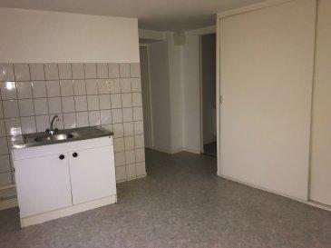 VAGNEY CENTRE, JOLI F2 DANS PETIT IMMEUBLE COMP: Entrée sur séjour, cuisine avec placards , salle d\'eau, 1 chambre. Classe énergie : D