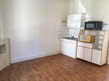 1 pièce - 33 m2.  Appartement 1 pièce de 33m2 situé au rez-de-chaussée surélevé d\'un immeuble rue Gabriel Mouilleron à Nancy. Il comprend une pièce princiaple, une cuisine séparée, une salle d\'eau avec WC. Chauffage individuel électrique.<br>