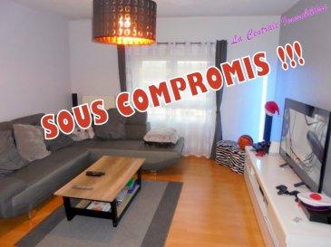 COMPROMIS EN COURS ....   .................EXCLUSIVITÉ DE LA CENTRALE IMMOBILIÈRE....................  Ref 3922 : Très bel appartement en duplex de plus de 113m² au sol entièrement rénové dans petite copropriété de 5 lots sur 2 étages. Grand hall d'entrée distribuant : un wc individuel, une salle à manger sur cuisine ouverte et entièrement équipée 30m², un très grand salon 31m². En duplex une mezzanine longeant deux chambres avec placard équipé, une salle de bains avec coin machine à laver (douche, une vasque, sèche serviettes).  Possibilité d'aménagement d'une 3ème chambre. Possibilité de vendre l'appartement meublé. D.V. PVC et O.B. + volets roulants. Chauffage central individuel gaz de ville récent.  Faibles charges de copropriété du à un syndic bénévole 30 € par mois.  Ce bel appartement à retenu votre attention, pour un simple renseignement ou une visite contactez ROGER 03.82.20.83.73. à LA CENTRALE IMMOBILIÈRE JARNY / PIENNES.