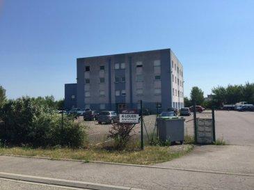 Plateau de bureaux en rez de chaussée d'un immeuble de bureau idéalement situé dans la zone EUROPORT à St Avold. Nombreuse places de stationnement disponible devant l'immeuble