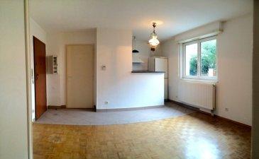 Neudorf, proche de la place du Marché Dans une petite rue calme. Entrée avec porte de sécurité, séjour avec placards, cuisine équipée ouverte (plaques, hotte, rangements), salle de bains, wc séparé.