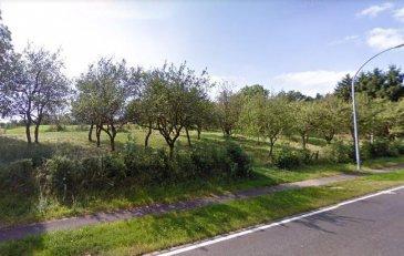RE/MAX, spécialiste de l'immobilier au nord du Luxembourg, vous propose dans un cadre de verdure exceptionnel, ce beau terrain libre de construction à Derenbach dans la commune de Wincrange. Ce terrain d'une superficie de 7.01 ares, exposition plein sud, peut être utilisé pour y construire une belle maison isolée.  Pour tout renseignement:  Martin Ellis  GSM: 661 160 061.  martin.ellis@remax.lu Ref agence :5096121