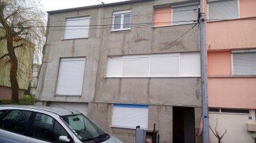 Maison en cours de rénovation totale avec une extension. La maison avoisinera les 160 m² habitables. La maison sera vendue clos couvert (portes et fenêtres), murs isolés et façade terminée, toiture refaite, charpente traditionnelle.   L'intérieur reste à terminer (revêtements, cuisine, sdb).  Pas de jardin mais possibilité d'en acquérir.    Honoraires inclus : 8% TTC charge vendeur.  Agence Agora : 03/82/20/25/26