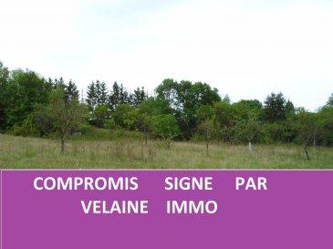 Terrain Voinémont
