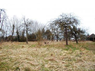 Terrain constructible à Landouzy-la-ville